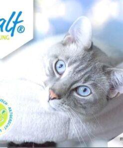BALF dla kota ryba 95%